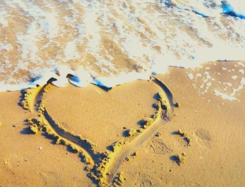 Un día de playa sin mamá