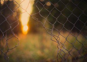 Proyecto-Pasar-Página-centros-penitenciarios