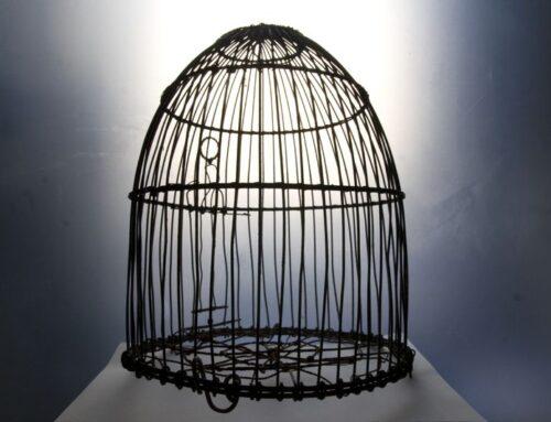 Cuando uno encuentra el camino. Vidas libres después de la cárcel